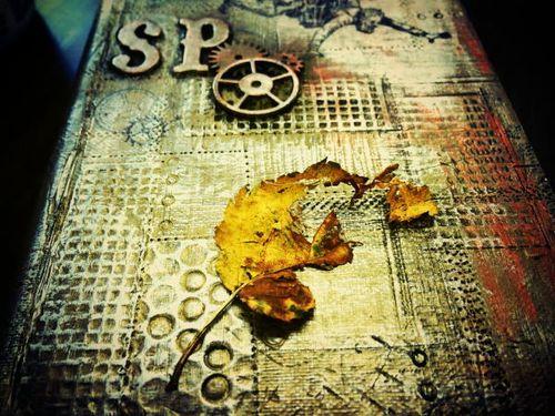 Spppp5